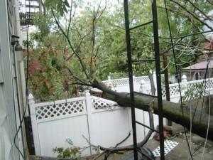 После урогана в Нью Йорке Сентябрь  2010