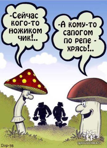 Грибы карикатура с интернета