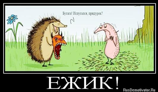 Смешное из русского интернета